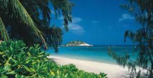 Cairns Sea Change Tree Change