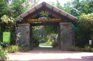 things to do in cairns - cairns botanic gardens - 3