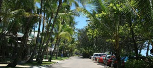 Palm Cove - things to do in cairns - live in cairns -1