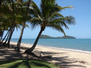 Palm Cove - things to do in cairns - live in cairns -2