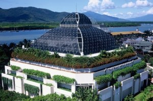 things to do in cairns - cairns wildlife dome
